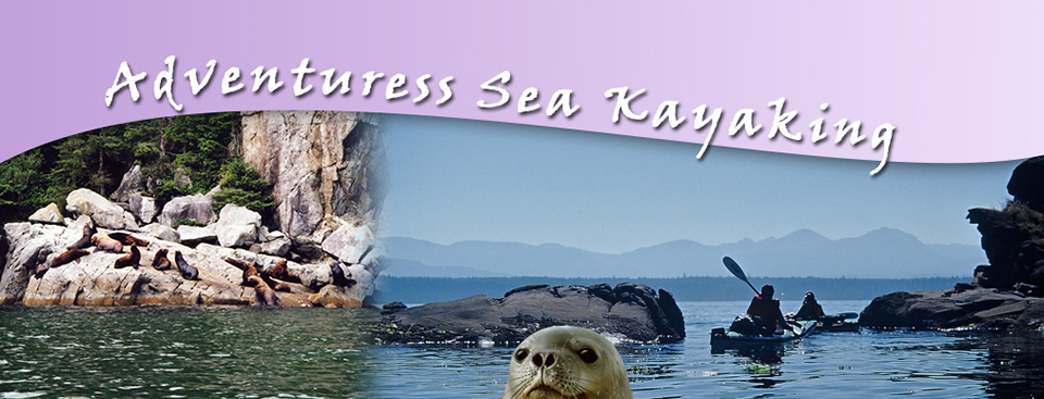 headers_kayak_tours.jpg