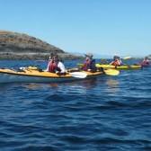 Mistaken Island  Tour with Adventuress Sea Kayaking