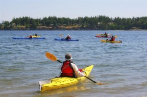 Adventuress Sea Kayaking